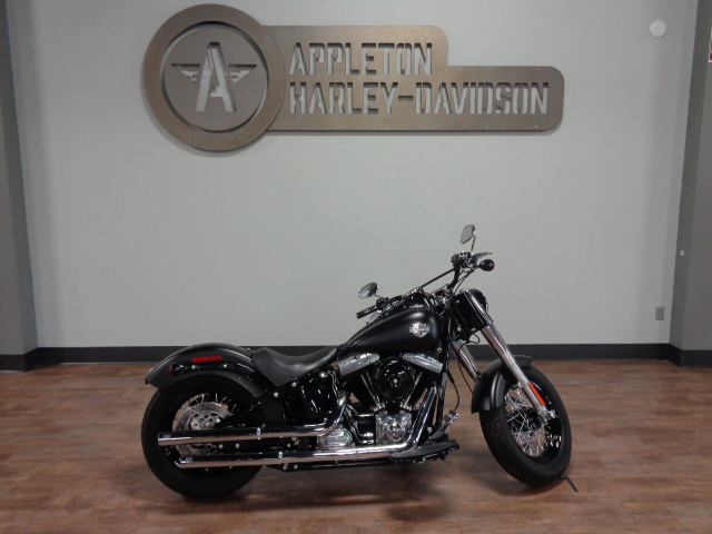 2020 Harley-Davidson Softail Slim [0]