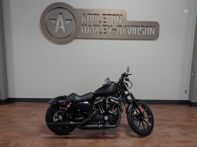 2021 Harley-Davidson Iron 883 [10]