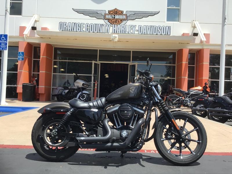 2020 Harley-Davidson Sportster 883 Iron [7]
